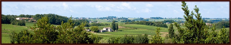 The view from Puisseguin towards St Emilion